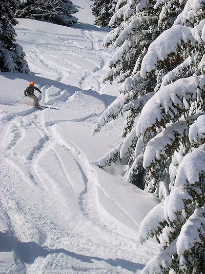 Skiing Cote 2000